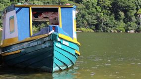 Bucolic color boat stock video
