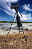 Video camera in a coral reef Royalty Free Stock Images