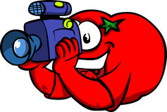 Video camera operator tomato Stock Image