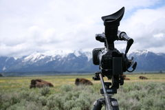 Video camera on tripod with tetons and buffalo. Video camera on tripod with grand teton moutains and buffalo in background Royalty Free Stock Photography