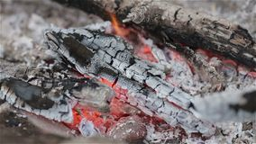Campfire in rock fire ring stock video footage