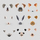 Video chat effects animal faces flat icons templates of dog, rabbit, cat Stock Photography