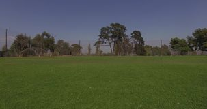 Video clip of baseball field stock footage