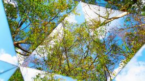 COUNTER CLOCKWISE KALEIDOSCOPE OF TREES CLOUDS & SKY. VIDEO OF A COUNTER CLOCKWISE KALEIDOSCOPE OF TREES CLOUDS & SKY stock footage
