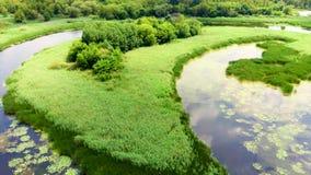 Video del metraggio del fiume e dei laghi dal fuco video d archivio