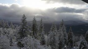 Video del tempo HD di inverno dell'Oregon video d archivio