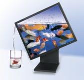 Video dell'affissione a cristalli liquidi Immagine Stock Libera da Diritti