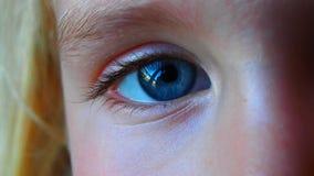 Video dell'occhio azzurro di lampeggiamento stock footage