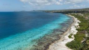 Video della laguna della costa di mar dei Caraibi dell'isola del Bonaire Fotografia Stock Libera da Diritti