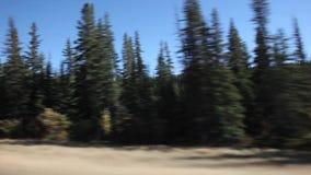 Video delle montagne e del lago stock footage
