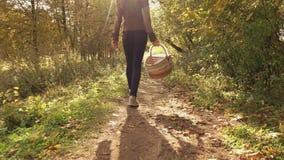Video dello steadicam del movimento lento di giovane donna castana che cammina attraverso il legno di autunno che tiene un canest