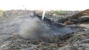 Video der Auslöschung des Feuers stock video