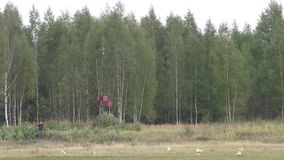 Video der Lastslandung bewegt mit dem Hubschrauber stock footage