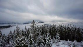 Video di lasso di tempo del tempo HD di inverno dell'Oregon stock footage