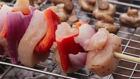 Video di Shacky degli spiedi e del barbecue in natura archivi video