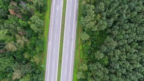 Video drone aerial view over the road in the forest on the way to north of Poland. stock footage