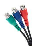 Video ed audio connettori di RCA Immagine Stock