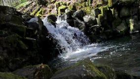 Video: Ein kleiner Wasserfall mit einem klaren Teich stock footage