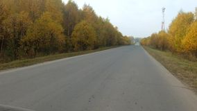 Video of empty highway and trees. In autumn stock video footage
