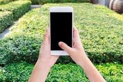 Video för hållande mobiltelefon för kvinnahand hållande ögonen på Royaltyfri Fotografi