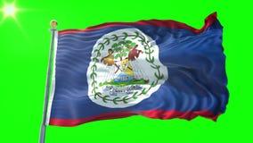 Video för tolkning 3D för Belize flagga sömlös kretsa Härligt vinka för ögla för textiltorkduketyg