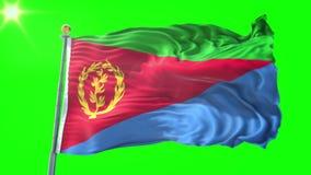 Eritreanska kön video