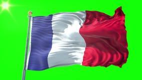 Video för tolkning 3D för Frankrike flagga sömlös kretsa Härligt vinka för ögla för textiltorkduketyg