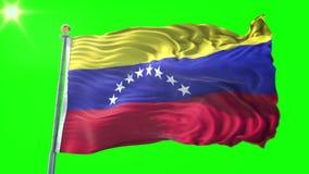 Video för tolkning 3D för Venezuela flagga sömlös kretsa Härligt vinka för ögla för textiltorkduketyg
