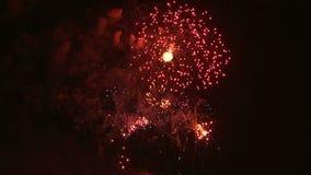 Fireworks exploding in the night sky stock video
