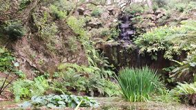 Beautiful and idyllic waterfall surrounded by lush green vegetation in bright sunny day. Located in Sintra, Portugal. stock video