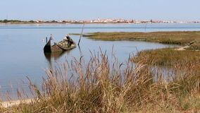 Small and decrepit sunken boat half-submerged in estuary, surrounded by vegetation. Small quaint town in horizon.