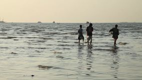 Video Footage Stock Silhouette Three men flow along the shallows sky sea breeze ebb tide coastline sunset stock footage