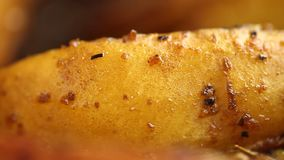 Video fried in ghee with spices pieces of potatoes stock video