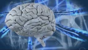 Video generato Digital di cervello umano illustrazione di stock