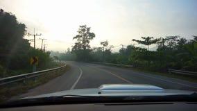 Video giungla tropicale con divertimento della foschia di mattina che conduce automobile nel viaggio stradale nebbioso POV stock footage