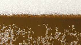 Video of gold cold beer in glass with little bubbles. Footage of gold cold beer in glass stock video footage