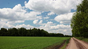 Video of green field and blue sky Royalty Free Stock Photography