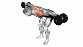 Video guides exercising. Lifting dumbbell in hand to lean forwa