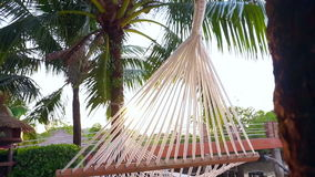 Video Hammock hung between palm trees on a tropical beach in morning sunlight. Hammock hung between palm trees on a tropical beach in morning sunlight stock video footage