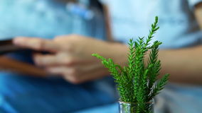 Video hand reading book with green plant in foreground. Abstract relax and education stock video