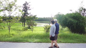 Video of  happy Asian senior couple walking exercise along the lake. Abstract love health and nature stock video footage
