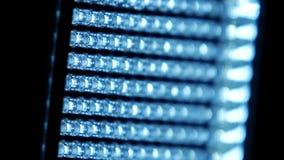 Video heldere verlichtingsleiden, zijaanzicht, op zwarte, dichte omhooggaand stock videobeelden