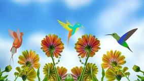 Hummingbird cartoon bird flowers. Video of hummingbird cartoon bird flowers vector illustration