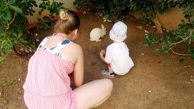 video 4k di giovane madre sorridente con il coniglio bianco d'alimentazione del ragazzo adorabile del bambino video d archivio