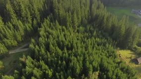 Carpathian Mountains in Ukraine 2018. Video made by drone of Carpathian Mountains and forest, Ukraine 2018. The Carpathian Mountains form a 1,500km-long range in stock footage