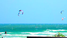 Video Many glide surf, kite board sport playing in the ocean stock video