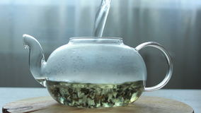 Video of Process of brewing green Chinese tea in a glass teapot stock footage