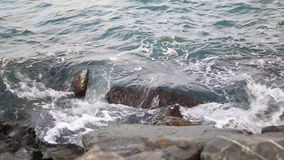 Video from the sea shore with the waves stock footage