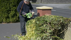 Video senior gardener male in garden cutting trimming hedge with power tools stock video