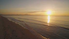 Video sopraelevato della donna di misura che sta alla spiaggia idilliaca durante il tramonto stock footage